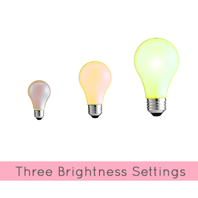 3 Brightness Settings