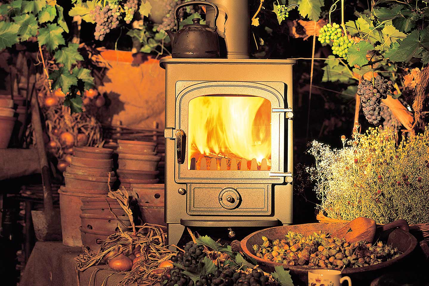 Clearview Values Fireplace
